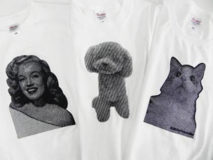 エムリン&トイプードル&キヌコ.jpgのサムネイル画像のサムネイル画像